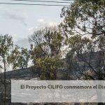 El Proyecto CILIFO conmemora el  Día Internacional contra el Cambio Climático