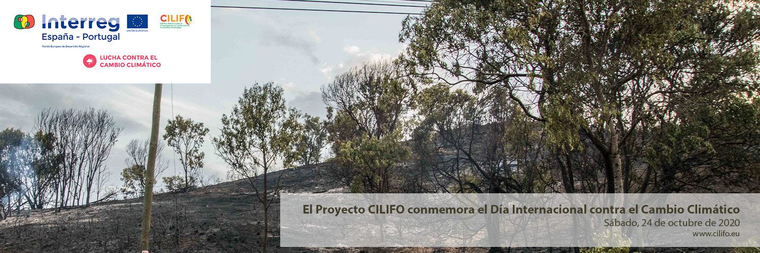 The CILIFO Project commemorates the International Day against Climate Change