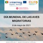 El Proyecto CILIFO conmemora el Día Mundial de las Aves Migratorias